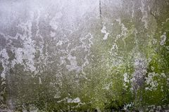 Concrete wall and moss; concrete wall covered with lichen. Aged or weathered concrete on wall background Stock Images