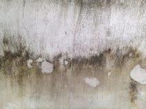 Concrete wall. Stock Photos