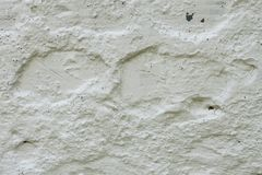 Concrete wall painted with lime Royalty Free Stock Photo