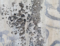 Concrete wall of the panel cement, Stock Images