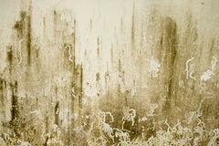 Concrete wall Texture.Abstract Background. Grungy concrete wall and stone floor room as background Stock Images