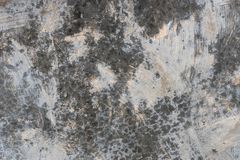 Concrete Wall Texture 0118 stock photos