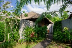 Entrance to the private Villa overgrown with greenery. Concrete walls and bamboo roof of a private Villa in the jungle royalty free stock photos