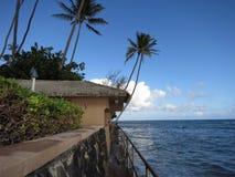 Concrete weg met metaaltraliewerk langs klippenkust met kokosnoot Stock Afbeelding