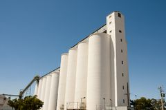 Concrete Wheat Silos royalty free stock images