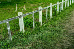 Concrete and wood fence Stock Images