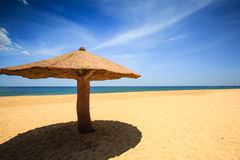 Concreted as mushroom parasol on the beach Royalty Free Stock Photo