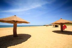 Concreted como o parasol do cogumelo na praia Imagem de Stock