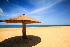 Concreted como o parasol do cogumelo na praia Foto de Stock Royalty Free