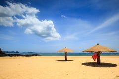 Concreted como o parasol do cogumelo na praia Fotos de Stock Royalty Free
