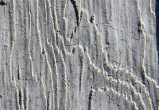 Concreto de madera Foto de archivo