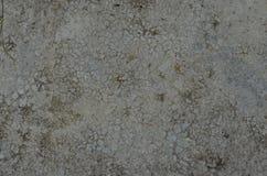 Concreto Textured do almofariz Fotografia de Stock