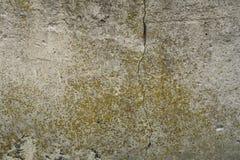 Concreto velho com decalque foto de stock