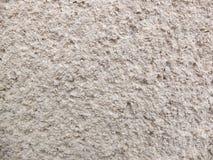 Concrette textur Arkivfoton
