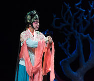 "Concubine- imperial harem or seraglio-Jiangxi opera ""Red pearl"" Royalty Free Stock Image"