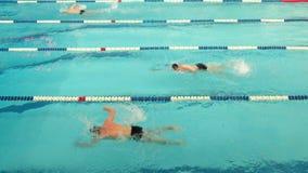 Concurrence de natation à la Chambre de l'université physique de culture des communications à St Petersburg banque de vidéos