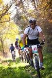 Concurrence de vélo de montagne dans la forêt d'automne Image stock