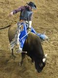 Concurrence professionnelle d'équitation de Taureau Images stock