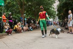 Concurrents portant Batman et escroc de Robin Costumes Participate In Doggy image libre de droits