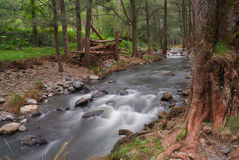 Condamine Fluss Stockfotografie