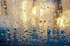 Condenced-Wassertropfen Stockfotografie
