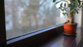 Condensação da água de limpeza da mulher na janela filme
