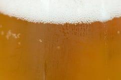 Condensação em um vidro da cerveja fotos de stock royalty free