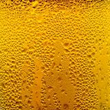 Condensation Droplets on a Glass of Cold Beer Royalty Free Stock Photo