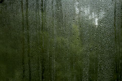 Condensation droplets in a window Stock Photo