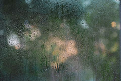 Condensation on the glass. Trees in the background Stock Image