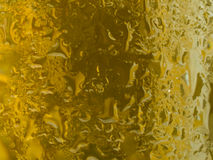 Condensation on gold beer bottle Royalty Free Stock Photography
