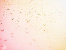 Condensation sur le verre pendant le matin Baisses sur le verre Photographie stock