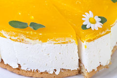 Condensed Milk Cake Royalty Free Stock Image