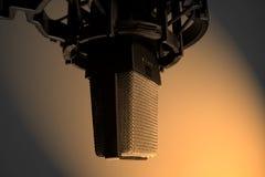 Condenser Mic in Sepia. Studio Condenser mic royalty free stock photo