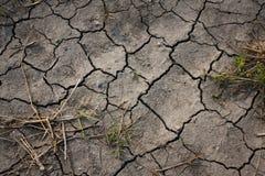 Condições da seca Foto de Stock
