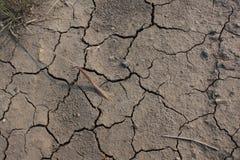 Condições da seca Foto de Stock Royalty Free