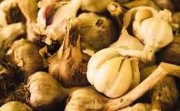 Condicalo con aglio! Immagine Stock