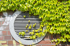 Condicionador de ar verde Fotografia de Stock