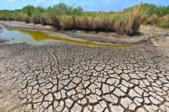 Condiciones de la sequía Foto de archivo