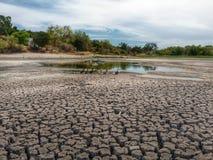 Condiciones severas de la sequía Imágenes de archivo libres de regalías