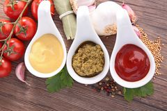 Condiment, mayonnaise,pesto and ketchup Stock Images