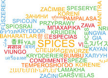 Condimenta concepto multilingue del fondo del wordcloud Imagenes de archivo