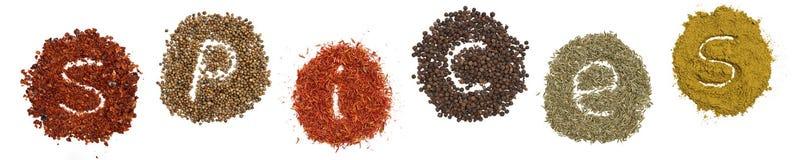 Condimenta los chiles, curry, azafrán, corriander, comino Imagen de archivo libre de regalías