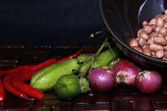 Condimenta típico de Indonesia antes de cocinado Foto de archivo libre de regalías