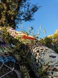 Condimenti dell'albero Fotografie Stock