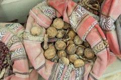 Condimenti nel sacco per vendita nel mercato arabo Fotografia Stock Libera da Diritti