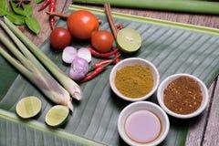 Condimento asiatico Fotografia Stock