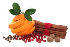 Condimento de la especia y de la fruta imagenes de archivo