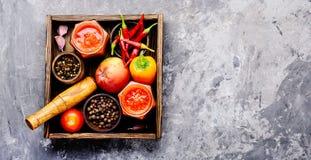 Condimento piccante, salsa immagine stock