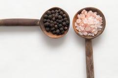 Condimentos de la sal y de la pimienta de los granos de la pimienta y de la sal de roca en la madera Fotos de archivo